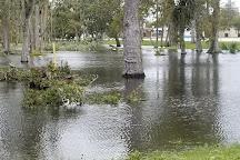 Tuscawilla Park, Daytona Beach, United States
