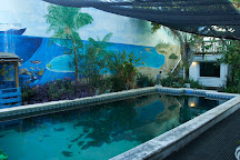 Captain's Corner Dive Center, Key West, United States
