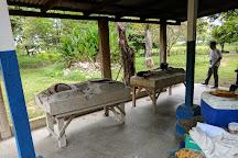Hacienda El Viejo Wetlands, Area de Conservacion Guanacaste, Costa Rica