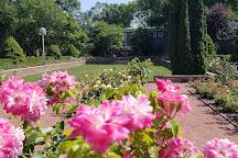 Merrick Rose Garden, Evanston, United States
