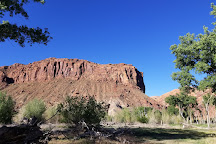 Scott Matheson Wetlands Preserve, Moab, United States