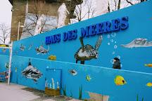 Haus des Meeres - Aqua Terra Zoo, Vienna, Austria