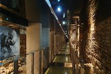 Rynek (Old Square) Underground, Krakow, Poland