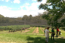 Clyde River Berry Farm, Mogood, Australia