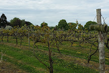 Carr Taylor Vineyard, Westfield, United Kingdom