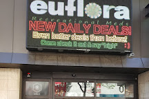 Euroflora, Denver, United States