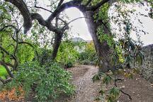 Ernest Wilson Memorial Garden, Chipping Campden, United Kingdom