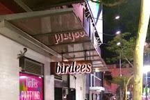 Birdees, Brisbane, Australia