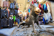 Mercato del Porcellino, Florence, Italy