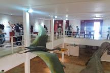 Museu de Paleontologia Placido Cidade Nuvens, Santana do Cariri, Brazil