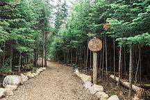 Experience Outdoors, LLC, Lake Placid, United States