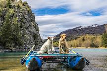 Kenai Riverdog, Cooper Landing, United States