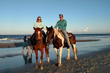 Happy Trails Walking Horses LLC, Fernandina Beach, United States