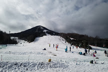 Kazawa Snow Area, Tsumagoi-mura, Japan