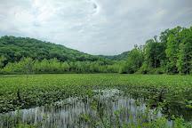 Zaleski State Forest, Zaleski, United States