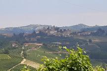 Cascina Albano, Barbaresco, Italy