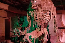 13 Stories Haunted House, Newnan, United States