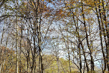 Cascade de la Terrisse, Allanche, France