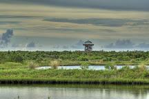 Robinson Nature Preserve, Bradenton, United States
