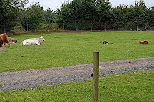 White Post Farm, Farnsfield, United Kingdom
