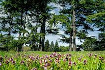 Arboretum de Chevreloup, Rocquencourt, France