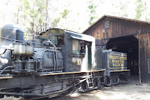 Yosemite Mountain Sugar Pine Railroad, Fish Camp, United States