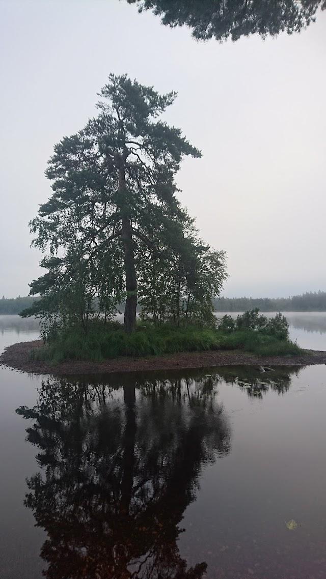 Rastplats Orranäsasjön