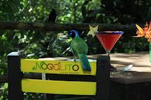 Nogalito Lugar Magico, Puerto Vallarta, Mexico