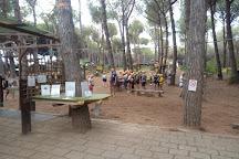 Tarquinia Adventure Park, Tarquinia, Italy