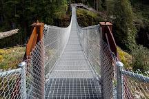 Elk Falls Suspension Bridge, Campbell River, Canada