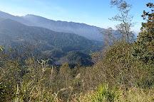 Shuiyang Forest, Zhushan, Taiwan