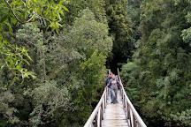Parque Pumalin, Chaiten, Chile