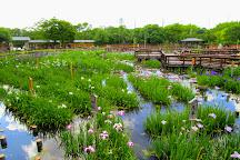 Yamadaike Park, Hirakata, Japan