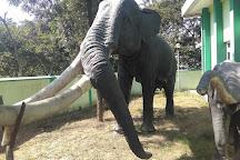 Suketi Fossil Park, Sirmaur District, India