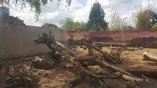 Hanwell Zoo london