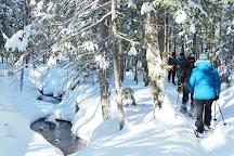 Vallee Rocanigan, Grand-Mere, Canada