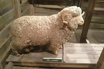 National Wool Museum, Geelong, Australia