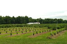 Blueberries of Indiana, La Porte, United States