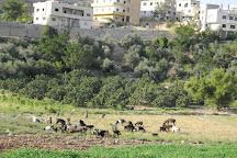 Qasr al-Abd, Amman, Jordan