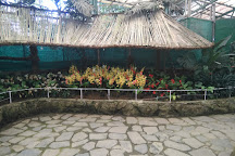 Flower Exhibition Centre, Gangtok, India