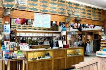 Dan Bailey's Fly Shop, Livingston, United States
