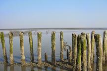 Dijkstra wadlooptochten, Pieterburen, The Netherlands
