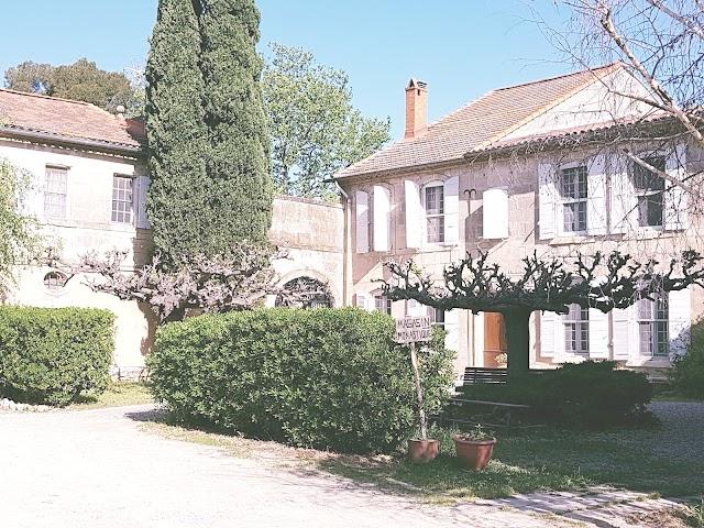 Domaine de Remoule
