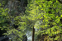 Liberty Falls State Recreation Site, Chitina, United States