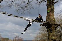 Aerial Extreme, Trentham, United Kingdom