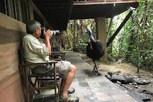 Tracks Birding & Photography Tours, Darwin, Australia