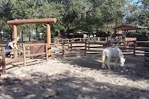 Tri-Circle-D Ranch, Orlando, United States