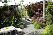 Nakamal 21, Noumea, New Caledonia
