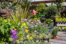 Boma Garden Centre Ltd, London, United Kingdom