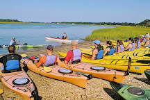 Charleston Outdoor Adventures, Charleston, United States